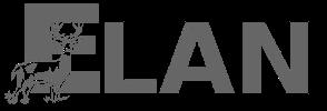 ELAN – Équipe littératures et arts numériques